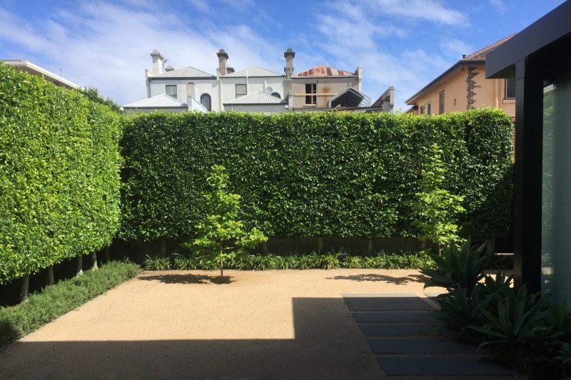 Back Garden in South Yarra, Toorak, Malvern, South Yarra, Prahran, Winsor, Hawthorn, Alphington, Northcote, Kew, Richmond, East Melbourne